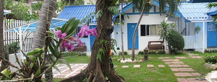 Сколько стоит снять бунгало в Таиланде на берегу моря